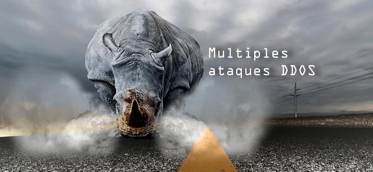 Múltiples ataques ddos rinoceronte