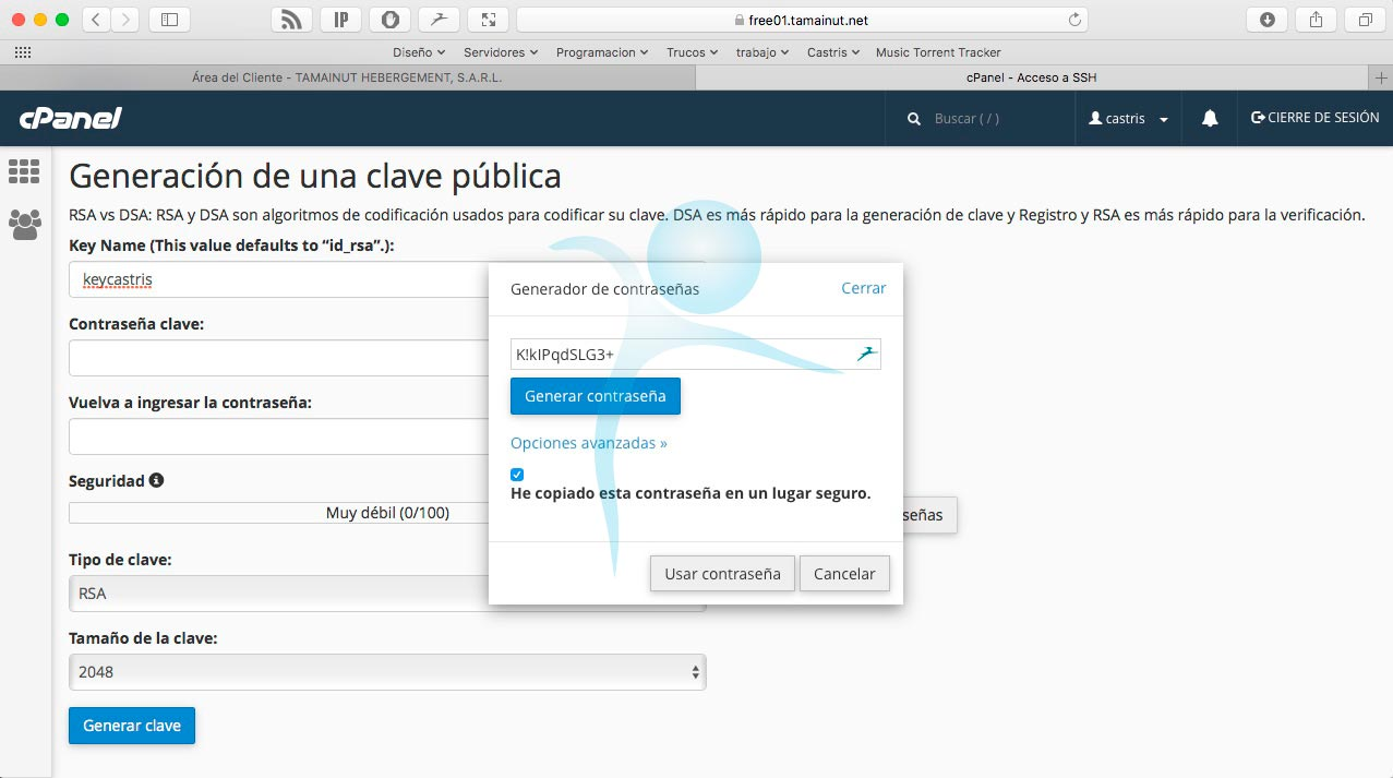 cPanel — Acceso a SSH crear llaves